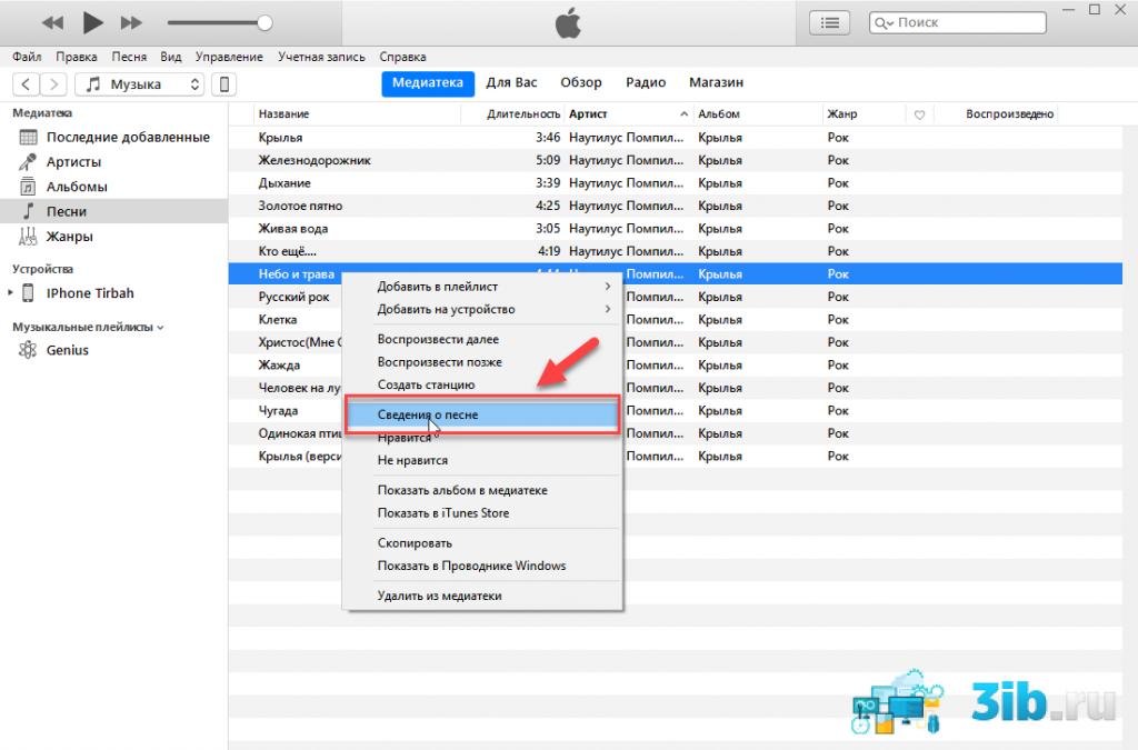 iTunes сведения о песне
